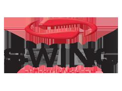 Swing - Waldhausen